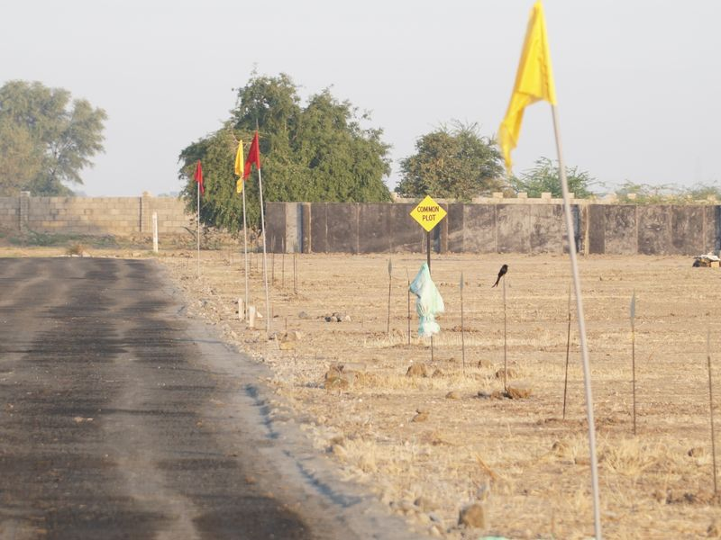 Clear Title NA NOC Residential Plot in Ahmedabad